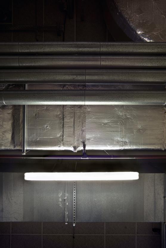 Untitled (Tubes 20), 2012 75 x 50 cm (30 x 20