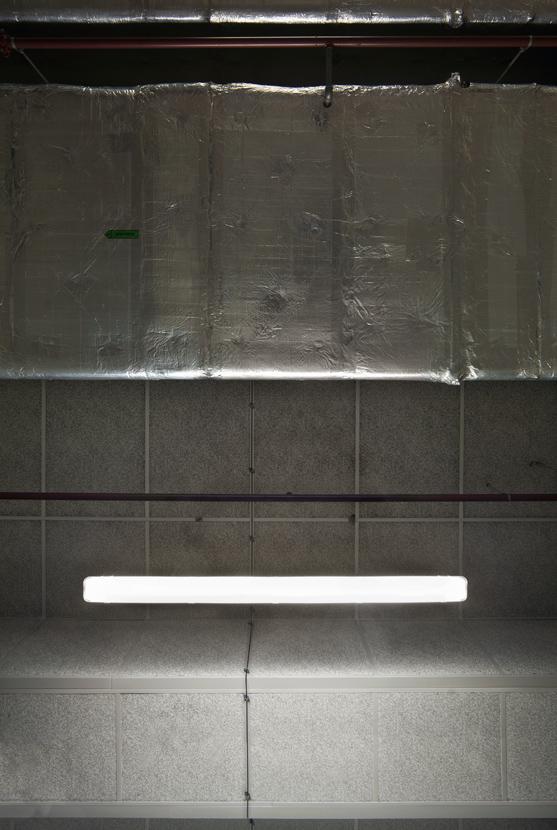 Untitled (Tubes 05), 2012 75 x 50 cm (30 x 20